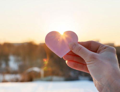 Spread the love: how YOU can help NDADA